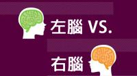 左腦 VS. 右腦人個性偏好大解析 圖解版