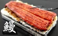 食指大動 仿真美食 iPhone Case
