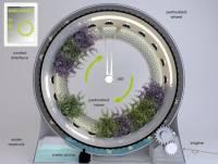在客廳也能種出一「圈」花園的Green Wheel