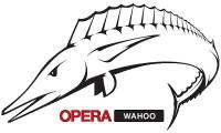 Opera 12 進入 Beta,並且有 64bit 版本