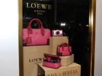 LOEWE x PentaxQ 粉紅皮質相機包