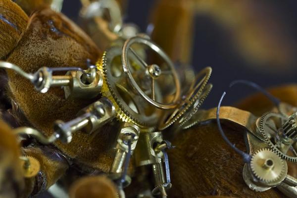 模擬未來機械生物體的昆蟲創作
