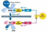 Sony 即將展示紙燃料電池