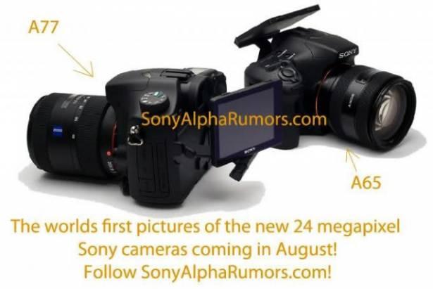 這是 Sony Alpha a77 的實機嗎?