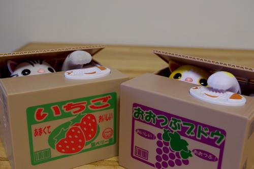 日本貓咪儲金箱之猜猜誰是拷貝貓!