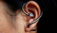 美杜莎遺落的蛇,留在女人的耳間