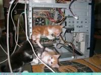 主人,讓我來幫你修電腦吧~