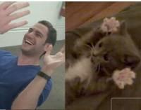 好 YouTube:可愛小貓與可口男人,今晚妳想要哪一個!