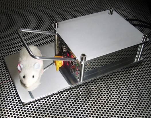 說真的,我們並不想用這種方法抓老鼠...