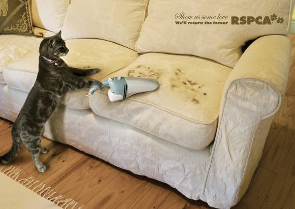 不要生氣嘛,人家會清乾淨啦!