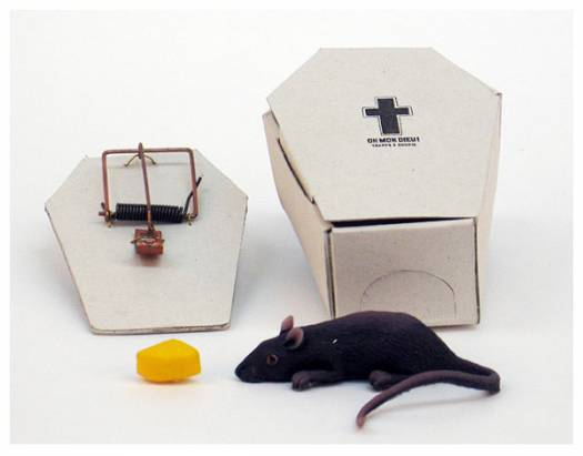 [分享] 這捕鼠器...究竟是人道還是變態啊?