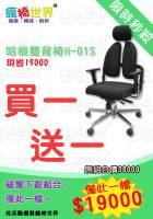 [瘋椅世界] 限量終極價 哈根雙背椅H-01S買一送一 僅此一次
