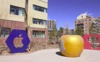 Steve Jobs 雕像竟出現在中國「鬼城」