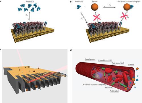 奈米感應晶片新應用,客製化抗生素種類、劑量並有助於後續新藥研發