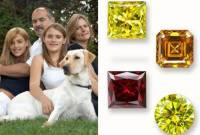 [好奇] 你對寵物的感情,值一顆鑽石嗎?