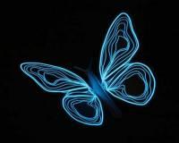 [好物] 冷冷藍光蝶,好迷幻~