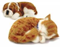 [新奇] 治療系電子寵物-Petzzz