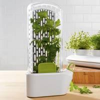 [好物] 香草很脆弱,在冰箱裡蓋個溫室吧~