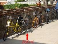 我的腳踏車令旁車黯然失色 ......黃金鳥! 已失竊)