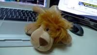 我的新夥伴小獅王
