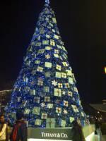女人的夢想聖誕樹