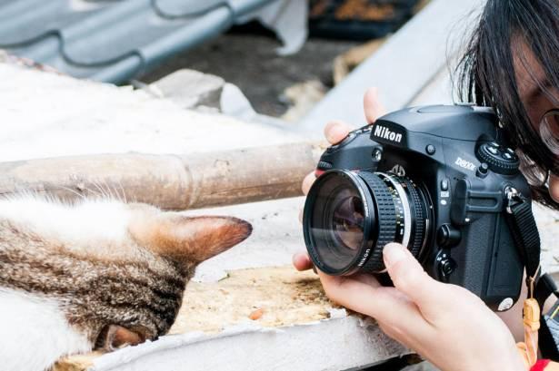 [攝影小教室] 單眼?微單眼?類單眼?搞懂你要哪種相機,別再被店員牽著鼻子走啦!