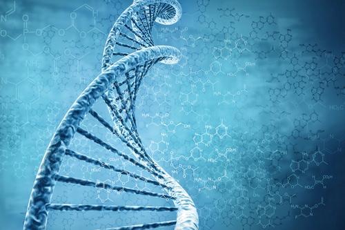 上週科研相關趣聞小整理:超級運動員基因、超能雷射、超古早腳印