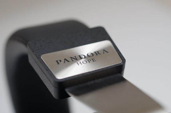 揭開潘朵拉的寶盒,圈鐵混合耳罩耳機 Final Audio Design Pandora Hope VI 動手玩