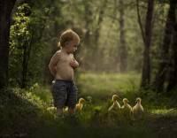農場媽媽拍攝孩子與動物間的美麗互動