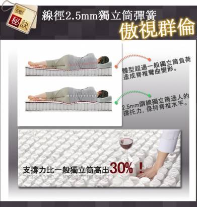 [睡眠達人-SL6105]國家專利,2.5mm強力獨立筒床墊,全面支撐,特大雙人,MIT(送USB保暖毯)