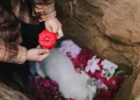 攝影師鏡頭紀錄愛犬的送別葬禮
