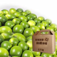 屏東新鮮綠鑽檸檬6斤