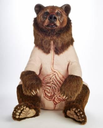 驚悚現實版的裸體大熊布偶