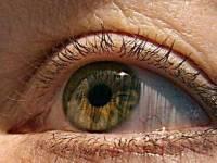 [科技新報]英國科學家利用3D印表機成功複製視網膜細胞