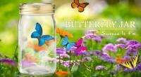 仿生蝴蝶罐Butterfly jar-迷幻藍