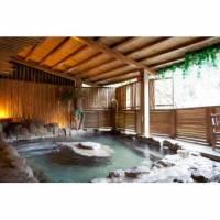 【谷關】龍谷觀光大飯店-NEC風呂男女裸湯泡湯雙人券