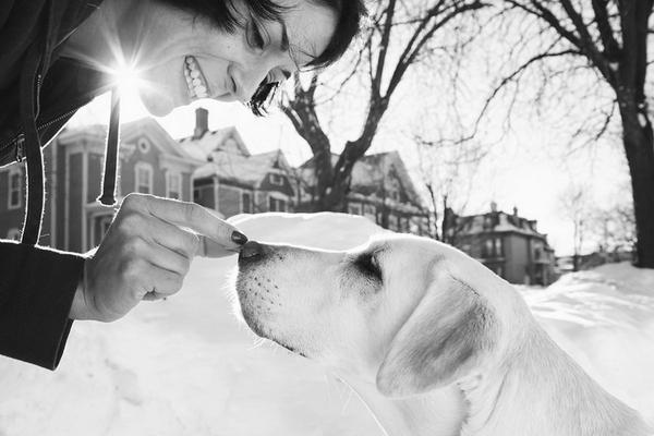 最後的禮物︰寵物善終攝影