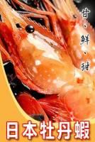 SJ牡丹蝦 1kg 15~18隻