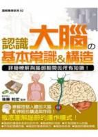 認識大腦的基本常識 構造