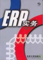 ERP實務(附贈光盤)