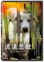 流浪悲歌 DVD