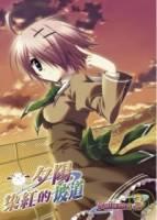 夕陽染紅的坡道 vol.3 DVD