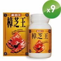 《葡萄王》樟芝王【春補養生】限時特惠9件組