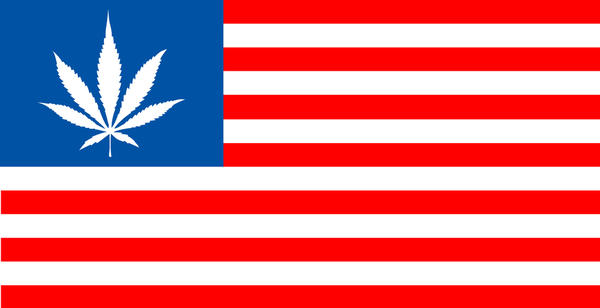 FBI 可能鬆綁局內大麻禁令,因應年輕資訊人才抽大麻問題...