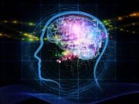 真的有辦法複製人腦嗎?IBM的人工智慧革命計畫大公開!