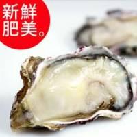 【尋鮮本舖】鮮凍の半殼生蠔6~8cm。10顆 包
