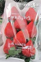 【已售完】日本銷售冠軍【博多心型草莓原裝件】 800g 箱。2入