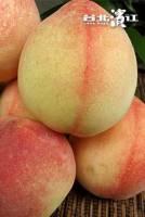 【已售完】台灣梨山甜蜜水蜜桃 8顆裝