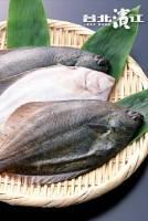 生凍黃金鰈魚 400~600g 尾