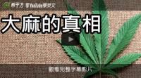 【希平方英文報】大麻的真相